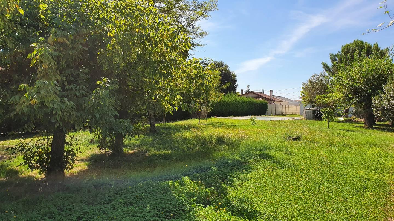 Photo 2 : Terrain constructible à Génissac (33420)