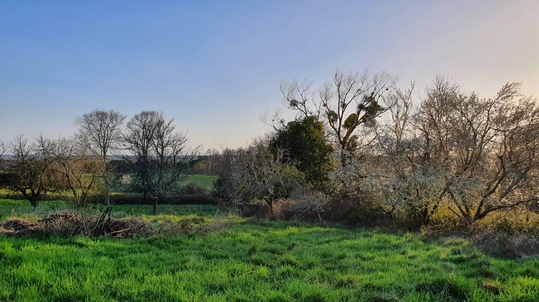 Photo 2 : Terrain constructible à Eglisottes-et-Chalaures (les) (33230)