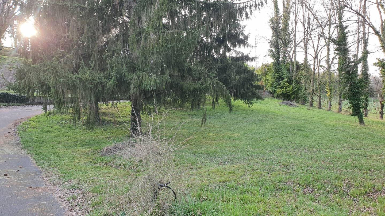 Photo 2 : Terrain constructible à St-Denis-de-Pile (33910)