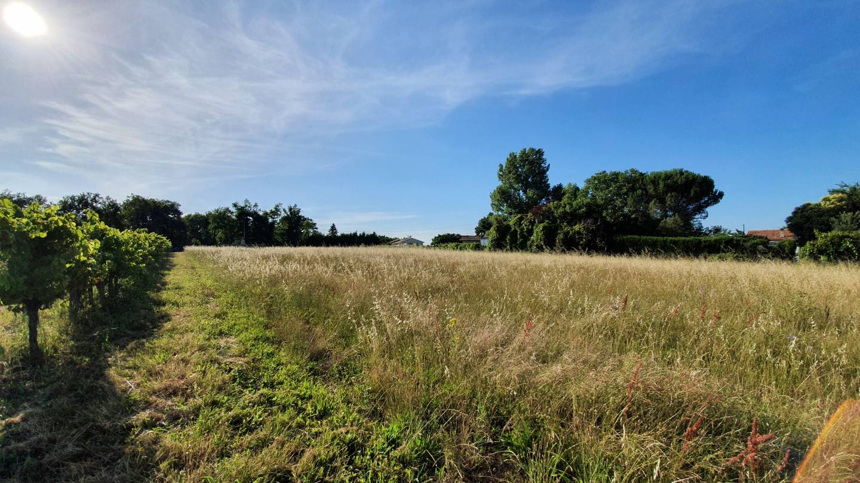 Photo 2 : Terrain constructible à Cavignac (33620)
