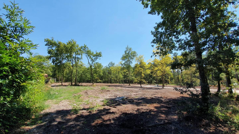 Photo 2 : Terrain constructible à Gauriaguet (33240)