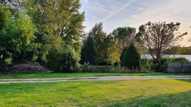 Photo 2 : Terrain constructible à Cubnezais (33620)