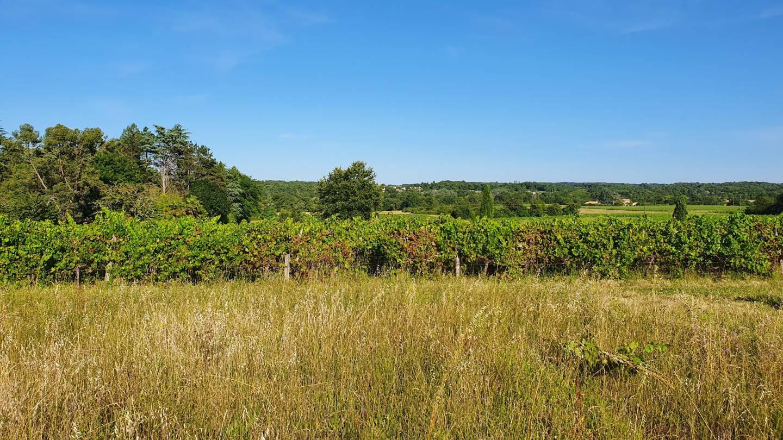 Photo 2 : Terrain constructible à Artigues-près-Bordeaux (33370)