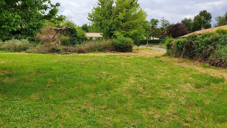 Photo 2 : Terrain constructible à St-Gervais (33240)