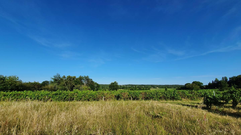 Photo 2 : Terrain constructible à Lormont (33310)