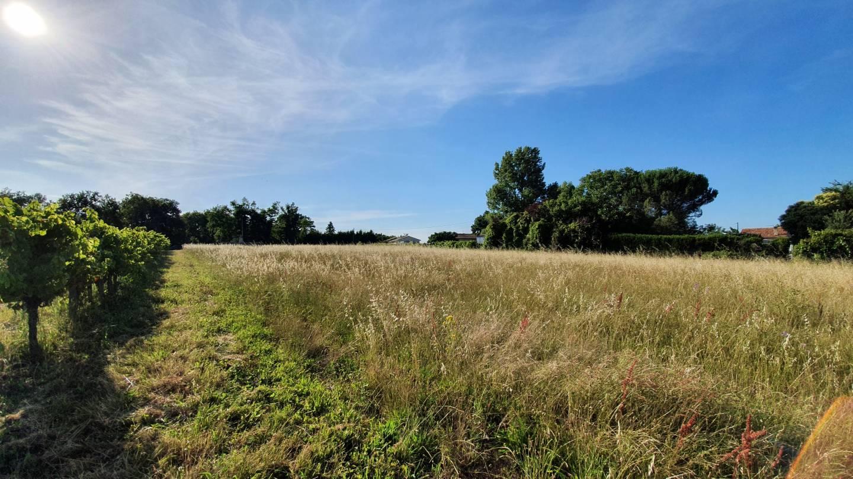 Photo 2 : Terrain constructible à Périssac (33240)